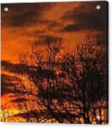 Orange And Yellow Sunset Acrylic Print