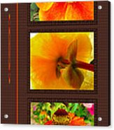 Orange Bloom Motif R Acrylic Print