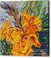 Orange Cannas Acrylic Print by Deborah Glasgow