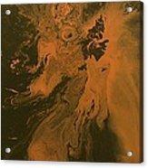 Orange Dragon Acrylic Print