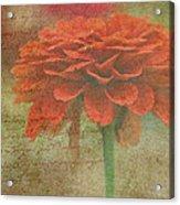 Orange Floral Fantasy Acrylic Print