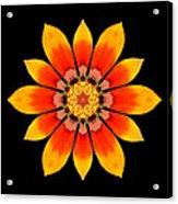 Orange Gazania I Flower Mandala Acrylic Print by David J Bookbinder