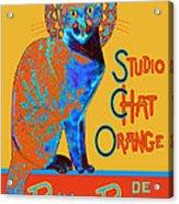 Orange Is The New Black Acrylic Print