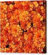 Orange Mums Acrylic Print