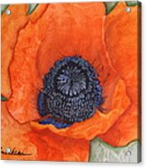 Orange Pop Watercolor Acrylic Print