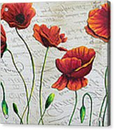 Orange Poppies Original Abstract Flower Painting By Megan Duncanson Acrylic Print