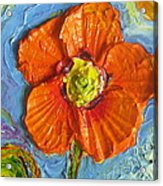 Orange Poppy II Acrylic Print by Paris Wyatt Llanso