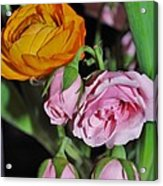 Orange Ranunculus And Pink Roses Acrylic Print