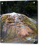 Orange Spring Mound #2 Acrylic Print