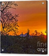 Orange Sun Setting Acrylic Print