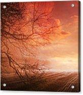 Orange Sunrise On Field Acrylic Print by Dorothy Walker