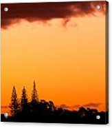 Orange Sunset And Silhouettes Of Norfolk Pines Acrylic Print