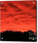 Orange Sunset Glow Acrylic Print