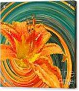 Orange Twist Daylily Photoart Acrylic Print
