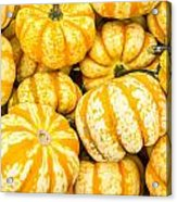Orange Winter Squash On Display Acrylic Print