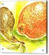 Oranges And Pears Acrylic Print