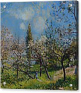 Orchard In Spring Acrylic Print
