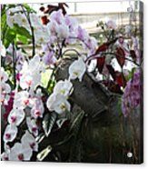 Orchid Branch Acrylic Print