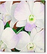 Orchid Splendor Painting Acrylic Print