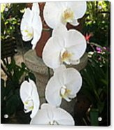 Orchid Tower Acrylic Print
