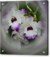 Orchid Wine Swirl Acrylic Print