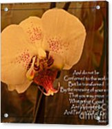 Orchid With Verse Acrylic Print