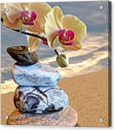 Orchids And Pebbles On Sand Acrylic Print