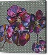 Orchids Grey Bubble Acrylic Print