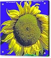 Oregon II Acrylic Print