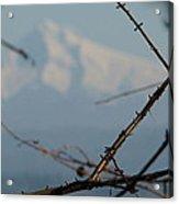Oregon Nature Frames Mountain Acrylic Print