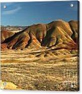 Oregon Painted Landscape Acrylic Print