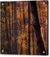 Oregon Twilight Acrylic Print by John Magnet Bell