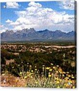 Organ Mountain Splendor Acrylic Print