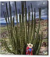 Organ Pipe Cactus The Visitor 1 Acrylic Print