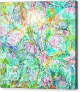 Organic Colors By Jan Marvin Acrylic Print