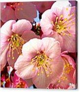 Oriental Flowers Acrylic Print