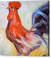 Original Animal Oil Painting - Big Cock#16-2-5-29 Acrylic Print