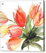 Original Tulips Flowers Acrylic Print