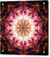 Orion Nebula I Acrylic Print