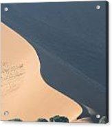 Orix Under The Dune Acrylic Print