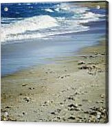 Ormond Beach Acrylic Print