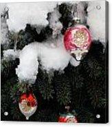 Ornaments Acrylic Print
