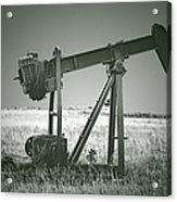 Orphans Of The Texas Oil Fields Acrylic Print by Christine Till