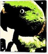 Oscar Acrylic Print