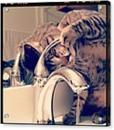 Oskar At The Faucet Acrylic Print by Mick Szydlowski