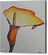 Ostara Acrylic Print