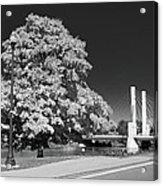 Osu Campus 9216 Acrylic Print