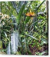 Otts Waterfall Room   Schwenksville Pennsylvania Usa Acrylic Print