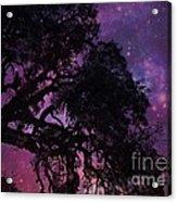 Our Amazing World Acrylic Print