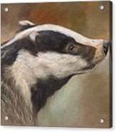 Our Friend The Badger Acrylic Print